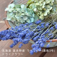 【北海道・富良野ラベンダー/濃紫】の ドライフラワー100gです♪ 花束でのドライフラワーですのでイ...