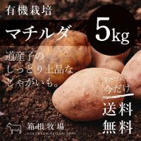 じゃがいも 有機栽培 北海道産 野菜 詰め合わせ マチルダ M~2L 5kg セット