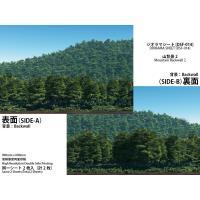 ■紙製ジオラマレイアウト用シート(同シート 2枚入) ■サイズ 900mm x 600mm ■両面フ...