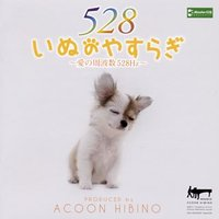 CD)ACOON HIBINO/いぬのやすらぎ~愛の周波数528Hz~ (TECH-21474)