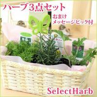 『ハーブとは』 それぞれに個性あふれる香りを持ち、花、茎、葉、種 子、根などが、薬品、食品、染料その...