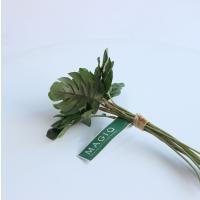 即日  造花 MAGIQ 東京堂  ミニモンステラピック GREEN FG002080 00   造花葉物、フェイクグリーン モンステラ