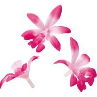 即日  造花 YDM ロイヤルオーキッド ビューティー 30個 FLP1060BTY 00   造花 花材「ら行」 ラン 蘭 ・オーキッド