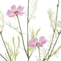 造花 YDM ナチュラルコスモス FS9916-L P 01   造花 花材「か行」 コスモス