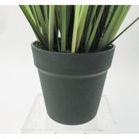 人工観葉植物 YDM ポンポングラスポットM グリーン GLA1394-GR 01   人工観葉植物 は行  その他 は行 人工観葉植物