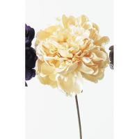 造花 アスカ ピオニーピック アイボリー A-39498-91 01 |芍薬 牡丹  造花 花材「さ行」 シャクヤク ボタン ピオニー