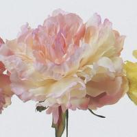 即日  造花 アスカ ピオニーピック ライトピンク A-31454-13 00 |芍薬 牡丹  造花 花材「さ行」 シャクヤク ボタン ピオニー
