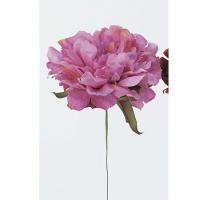 即日  造花 アスカ ピオニーピック ローズ A-31454-5 00 |芍薬 牡丹  造花 花材「さ行」 シャクヤク ボタン ピオニー