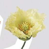 造花 アスカ ポピー×1 つぼみ×1 ホワイトグリーン A-30853-52 01   造花 花材「は行」 ポピー