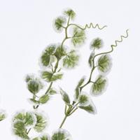 造花 アスカ ユキノシタ クリームグリーン A-42457-053A 01   造花葉物、フェイクグリーン その他の造花グリーン