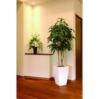 直送  人工観葉植物 光の楽園 光触媒 ア-バンパキラ1.8 717A550 返品・代引不可 07  日限定  人工観葉植物 は行  パキラ