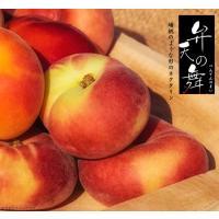●商品の特徴 蟠桃(ばんとう)のように、中央がつぶれた扁平な形をしたネクタリンです。果実の重さは約1...