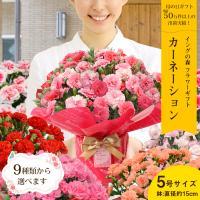 母の日 2021 お花 カーネーション プレゼント 鉢植え ギフト present gift こだわりラッピング