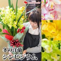 シンビジウム3〜4本立:花色をお選びくださいませ。 *入荷状況により良品がご用意できない場合は、 他...