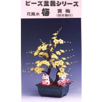 ◆サイズ 盆栽/約高さ30cm 約横25cm 約幅20cm       招き猫/高さ約5cm 約横3...