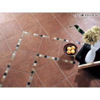 サイム磁器タイル (屋内床OK) ガラパゴス テラコッタ 30 30×30cm 13枚入 4200 (2171937) 陶器タイル  送料別 通常配送|handsman|02