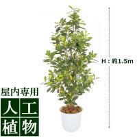 【人工植物】グリーンデコ アオキ 鉢付 1.5m
