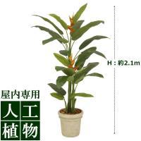 【人工植物】グリーンデコ ヘリコニア 丸鉢 2.1m