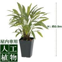 【人工植物】グリーンデコ カラテアG グリーン 0.9m