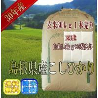 ◆年 産  28年度産 ◆産 地  島根県産 ◆品 種  コシヒカリ  ◆内容量  【白米4.5kg...