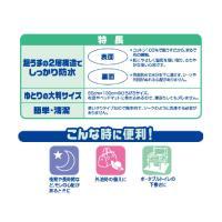 防水シーツ 防水 タイプ 3袋【リブドゥコーポレーション】|harika-gift|03