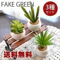 送料無料 観葉植物Mサイズ フェイクグリーン オーバル 3個セット