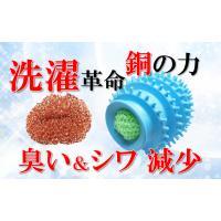 クリーン除菌ボール