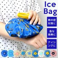 冷却パック アイスバッグ キャラクター 子供 氷のう 温冷兼用 M 大 氷嚢 グッズ 大人 アイシング 熱中症対策 夏 ひんやり ミッキー アナと雪の女王2