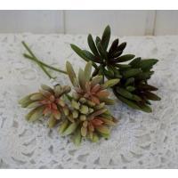 アロエプリカテェリスピック 多肉植物造花
