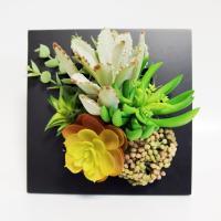多肉植物 カランコエ アエオニウム 壁掛け 黒フレーム アレンジメント アートフラワー アーティフィシャルフラワー 造花 贈り物 ギフト グリーン 60サイズ
