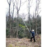 枝打ち一発 6.5m(N-763)枝打ち鋸 7段階 ニシガキ|hearty-e|03