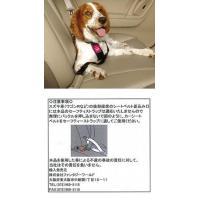シートベルトにワンタッチでOK。 そわそわワンちゃん、いたずらワンちゃんも安心なペット用シートベルト...