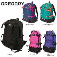 (旧ロゴ) GREGORY グレゴリー デイアンドハーフパック DAY& HALF PACK...