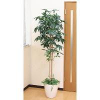 人工観葉植物 パキラ(下草付)1.8m