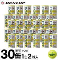 ダンロップ DUNLOP 硬式テニスボール フォート FORT 2球×30缶セット