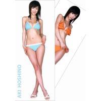 ほしのあき 超身大ポスター サイズ/175×69.5cm ※両面印刷のポスターです。