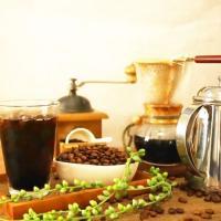 お中元 夏ギフト アイスコーヒーギフト オーガニック ブレンド アイスコーヒー 3本セット ギフト|hirocoffee-shop|03