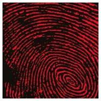 発売日:2012年03月21日 / ジャンル:ロック / フォーマット:SHM-CD / 組み枚数:...