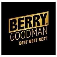 ベリーグッドマン / BEST BEST BEST 【期間限定スペシャル・プライス盤】  〔CD〕|hmv