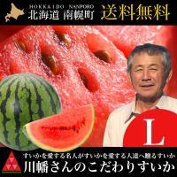 すいかに情熱を注ぎ続ける生産者 川幡さんが 北海道南幌町で育てる「こだわりのすいか」 平均糖度12度...
