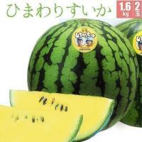 ひまわりすいかは北海道北竜町の名産品。最適。北竜産ひまわりすいか(優品)1.8kg2玉 (数量限定・...
