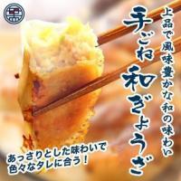 餃子 お取り寄せ 手ごね和ぎょうざ(20個入) -昆布茶が隠し味 もち豚× 国産キャベツ-