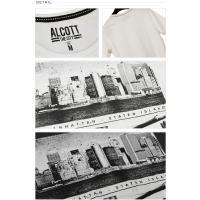 ALCOTT アルコット Tシャツ メンズ 半袖 TEE アメカジ グラフィック TS10605 AC11487SL 正規品 ダンス 衣装 ロック ゆうメール便送料無料