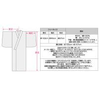 2015年新作浴衣!【粋 生成り地に流れる川に沿い咲く菖蒲(d5465)】