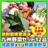 野菜セット 九州産 12品(オマケ野菜 高級卵含む) 減農薬 無農薬 放射能検査済み 送料無料