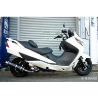 対応車種     SUZUKI/SKYWAVE250[スカイウェイブ](CJ43A) : 商品詳細 ...