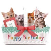 バースデーカード メロディカード P240 ねこかご サンリオ 子ねこたちが鳴き声で歌うミュージック誕生日カード Birthday Card