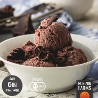 有機 JAS オーガニック 無添加 ジェラート アイス チョコレート味 乳製品不使用 卵不使用 6個 セット 合計510ml 卵アレルギー お菓子