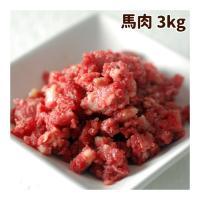 犬用 生肉 新鮮 馬肉ミンチ 小分けトレー 3kg