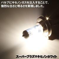 色光が鋭いプラズマホワイト光を照射! 白さ鮮烈明るさアップ! ☆H4 12V/100/90W 1ケー...